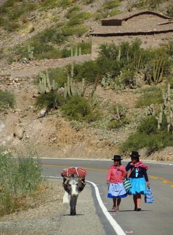 Bolivia1066_resize