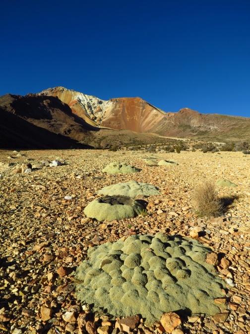 Bolivia1311_resize
