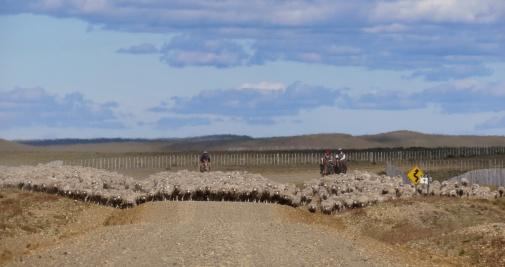 PatagoniaArgentinaChile_1055_resize