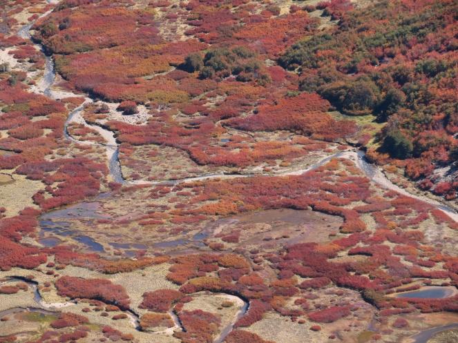 PatagoniaArgentinaChile_1450_resize