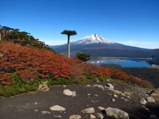 PatagoniaArgentinaChile_1657_resize