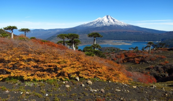 PatagoniaArgentinaChile_1663e_resize